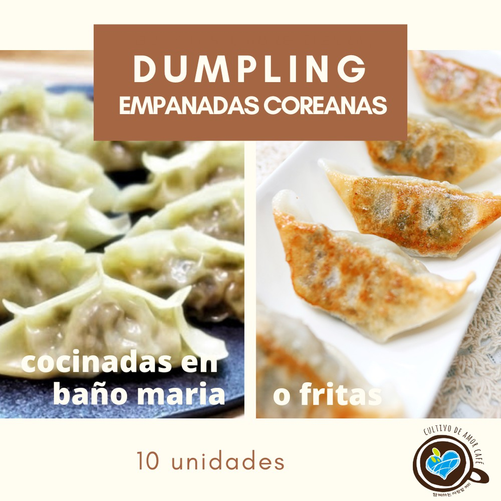 Dumpling - empanadas coreanas congelados 10 unidades