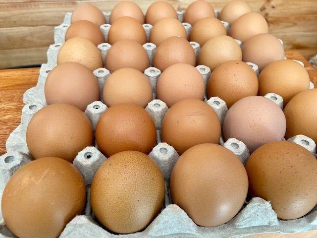 Huevos de gallina libre pastoreo 30 uds
