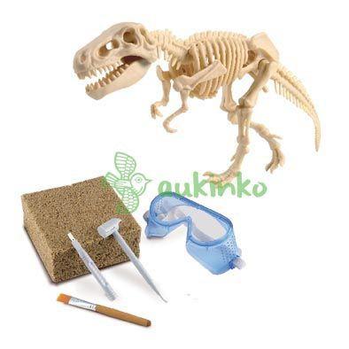 Exploracion kit dinosaurio CAJA