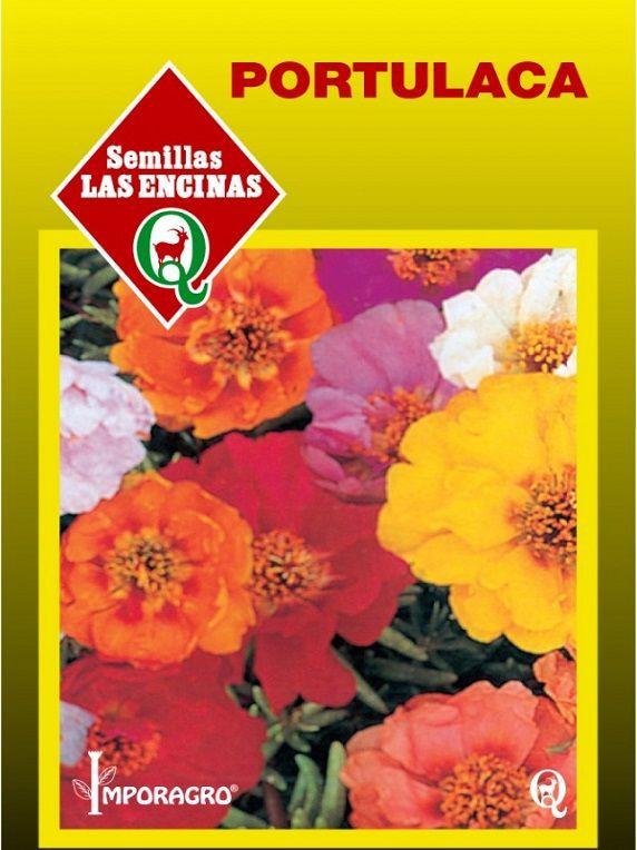 Semillas de flores portulaca