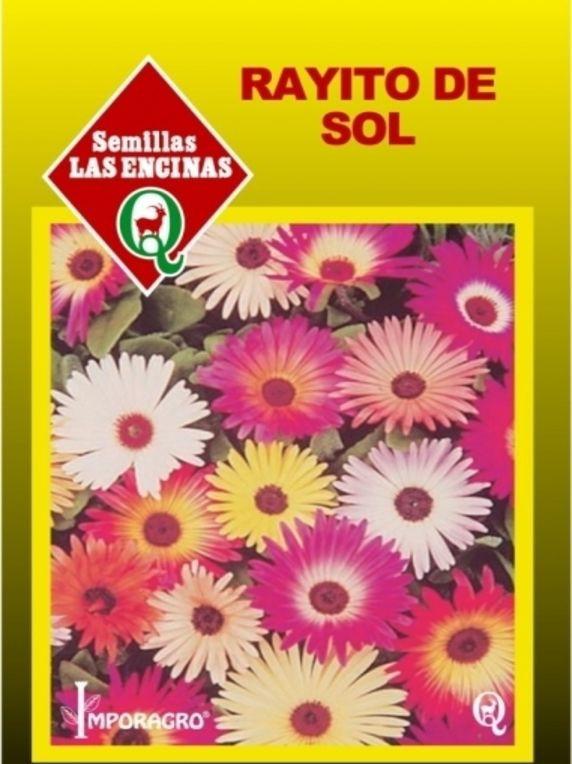 Semillas de flores rayito de sol