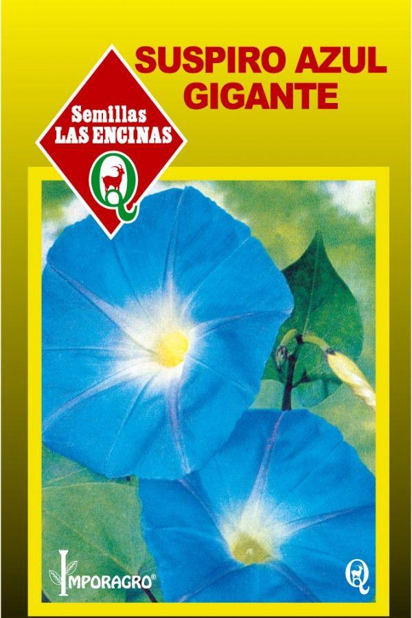 Semillas de flores suspiro azul