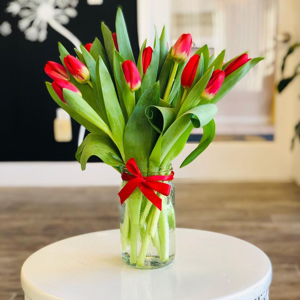 Trendy Tulips 1 CT