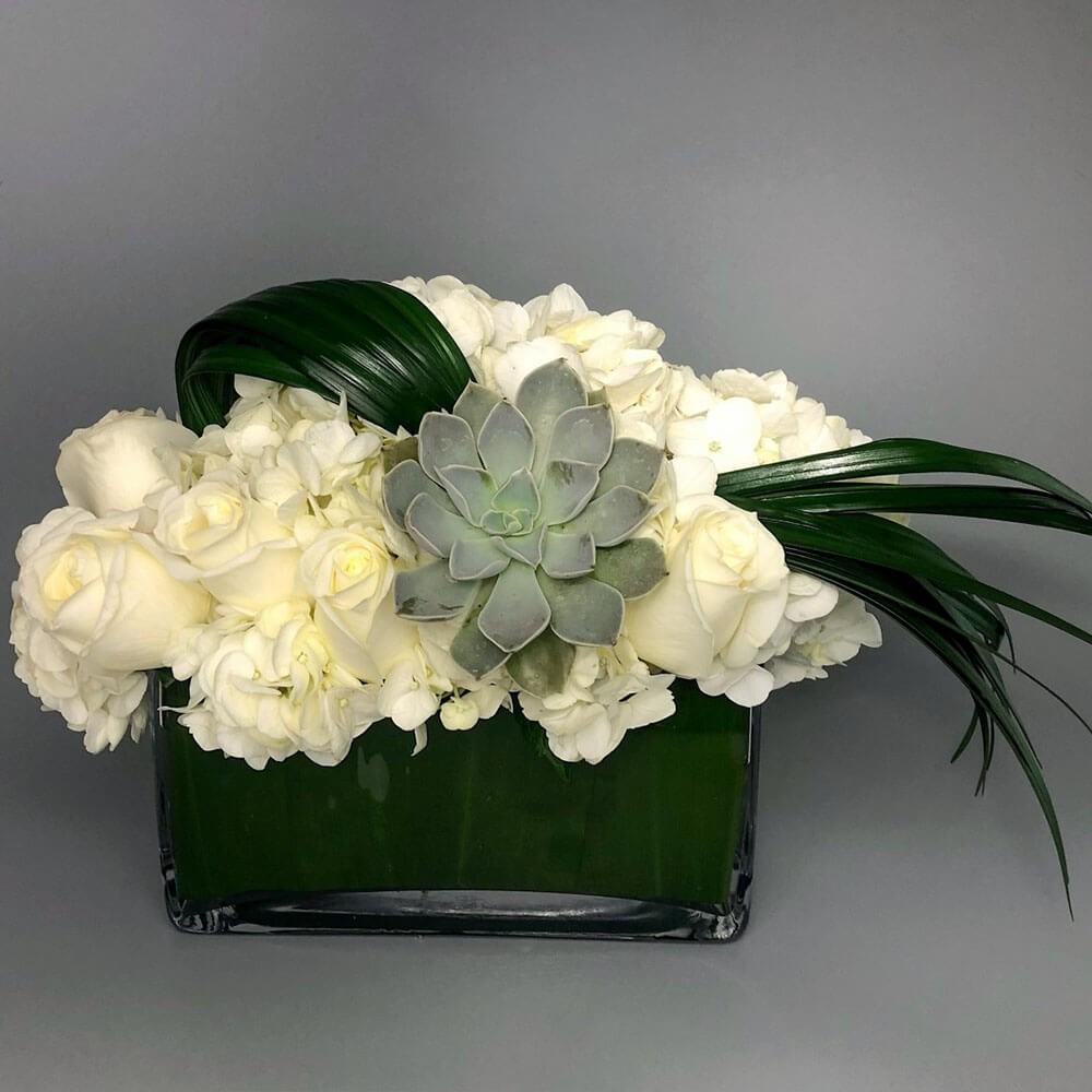 Succulent charm 1 arrangement