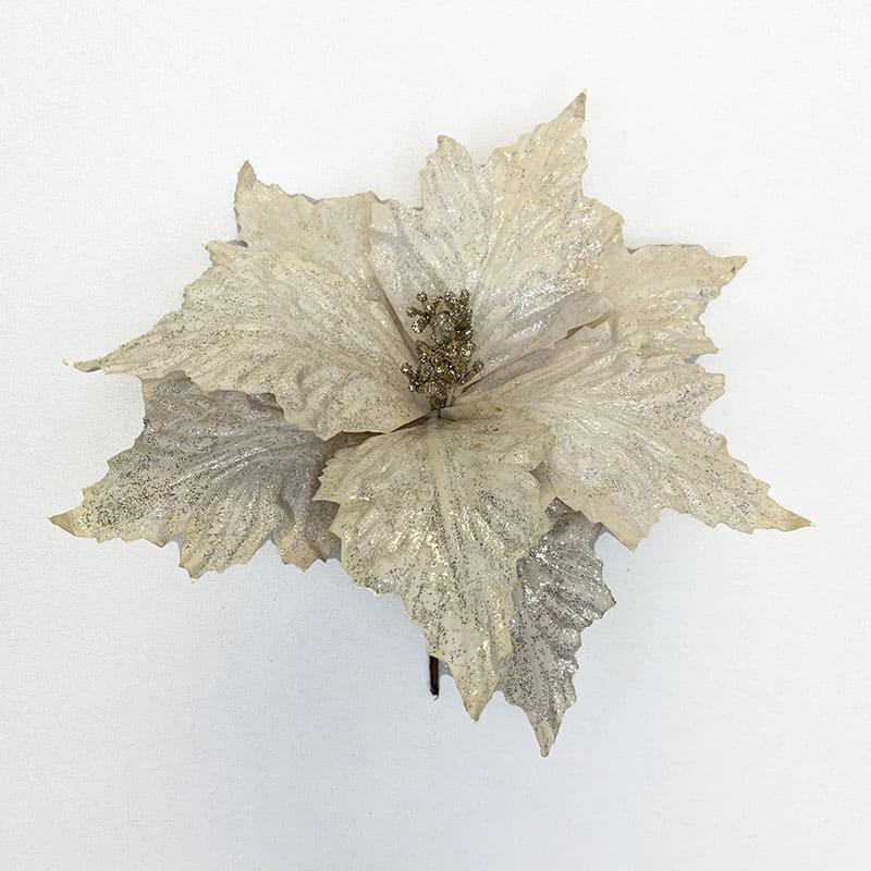 Poinsettia crema 33 X 27 CM