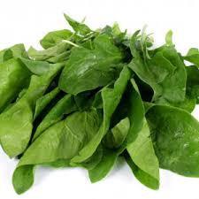 Espinaca fresca Atados de 500 gr aprox