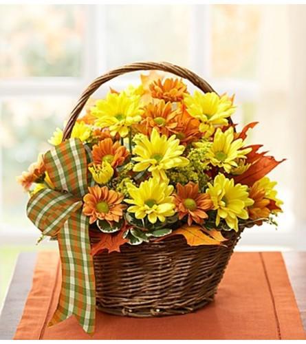 "Fall daisy basket - standard 10""H x 9""W x 11""H"