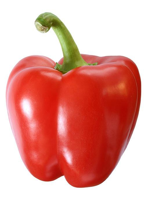 Organic red pepper Bulk price per Kg