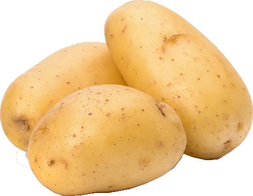 Organic yellow potato Price per Kg