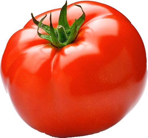 Organic hothouse tomato Price per kg
