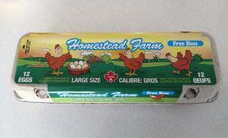 Farm eggs large free run 12 ct