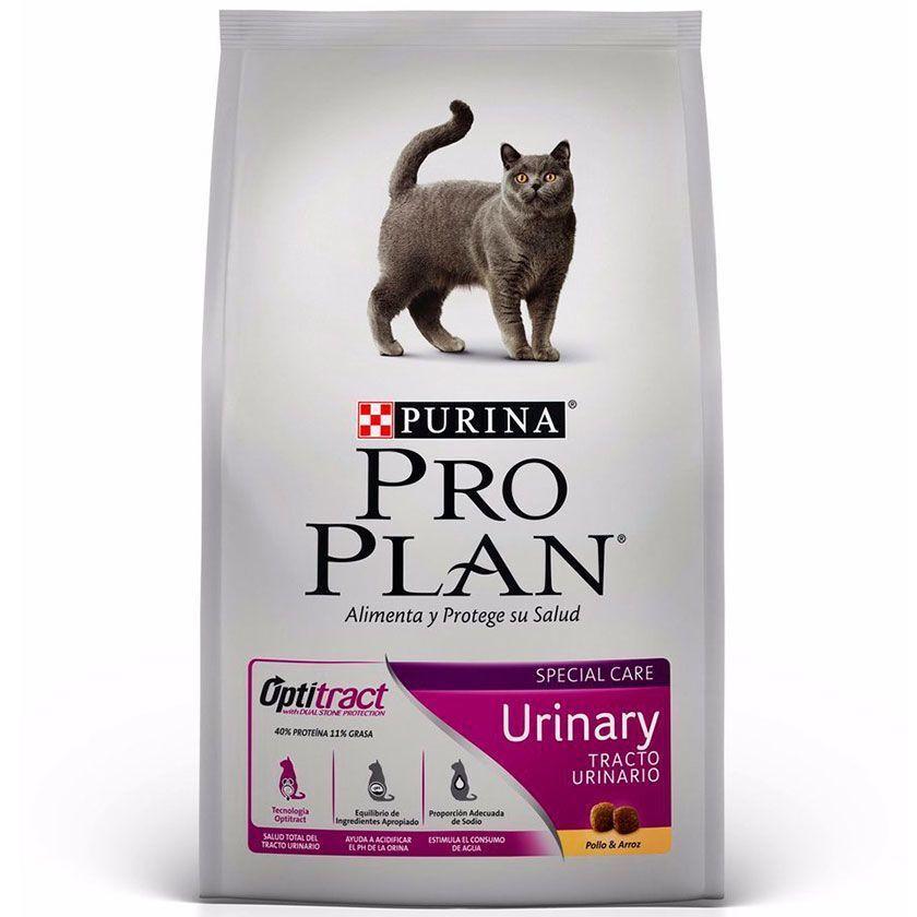 Cat urinary