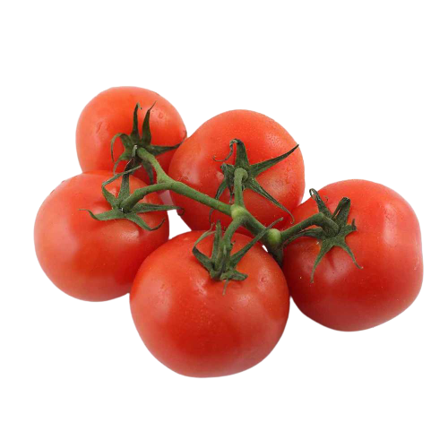 Tomatoes clusters on the vine