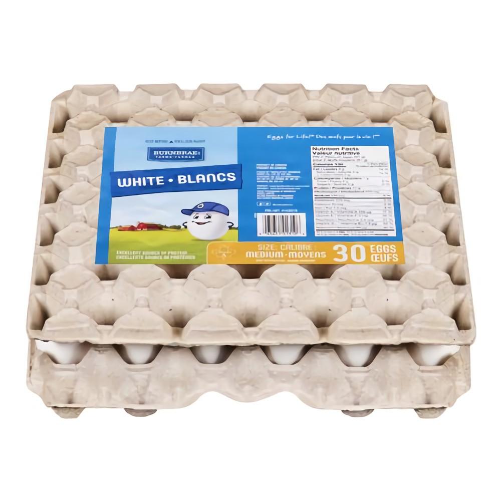 White medium size eggs