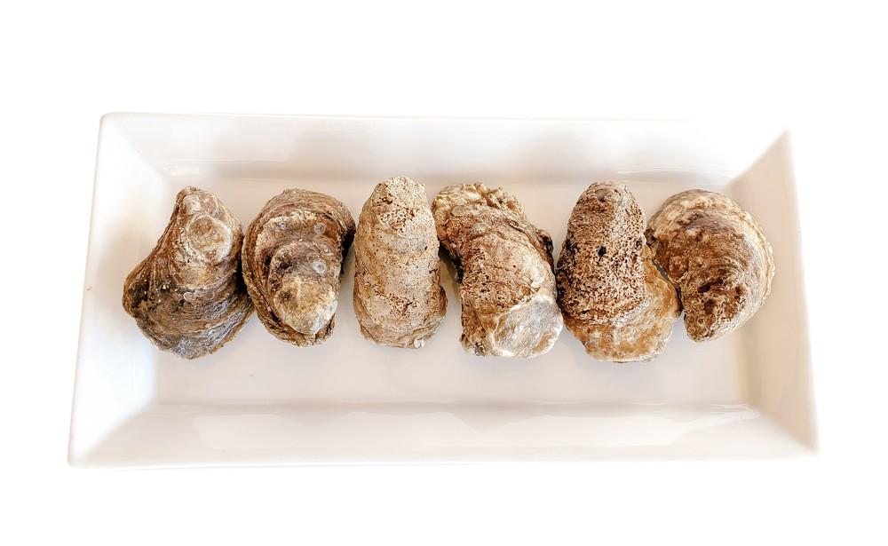 Unshucked- Oysters Dozen