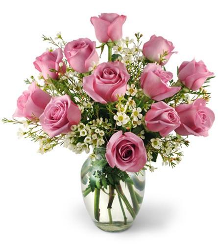 Dozen lavender roses Deluxe