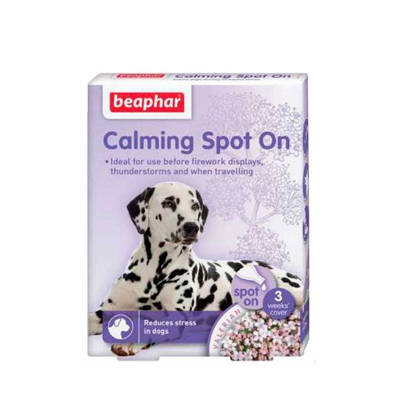 Calming spot on for dogs