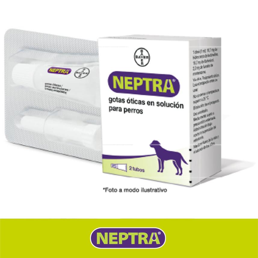 Neptra solución otica 2 blíster con un tubo de 1 ml 2 Blíster con un tubo de 1 ml