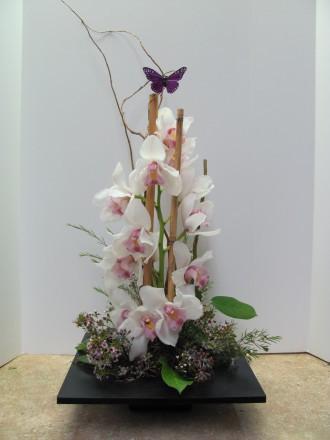 Simply orchids 1 bouquet