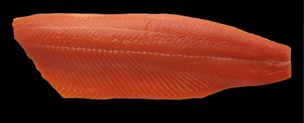 Salmón filete con piel premium kg