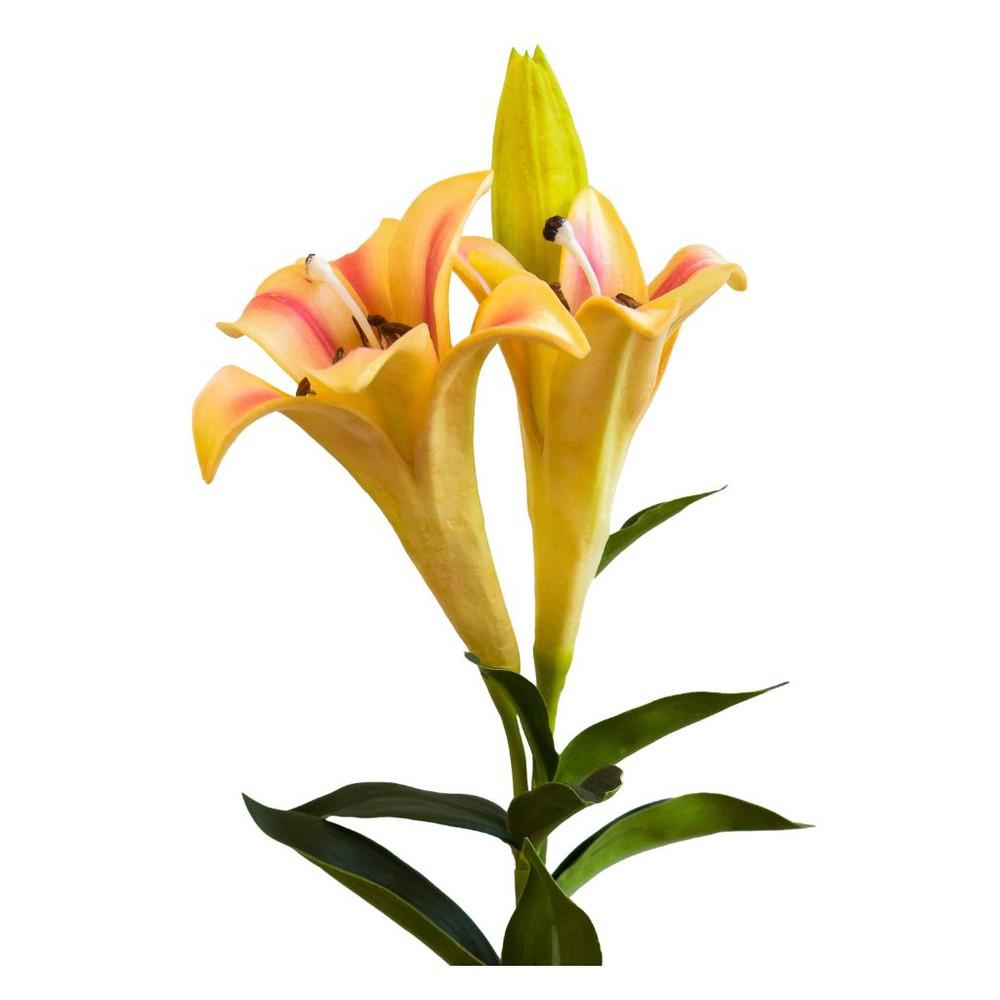 Lilium doble 68,5 cm