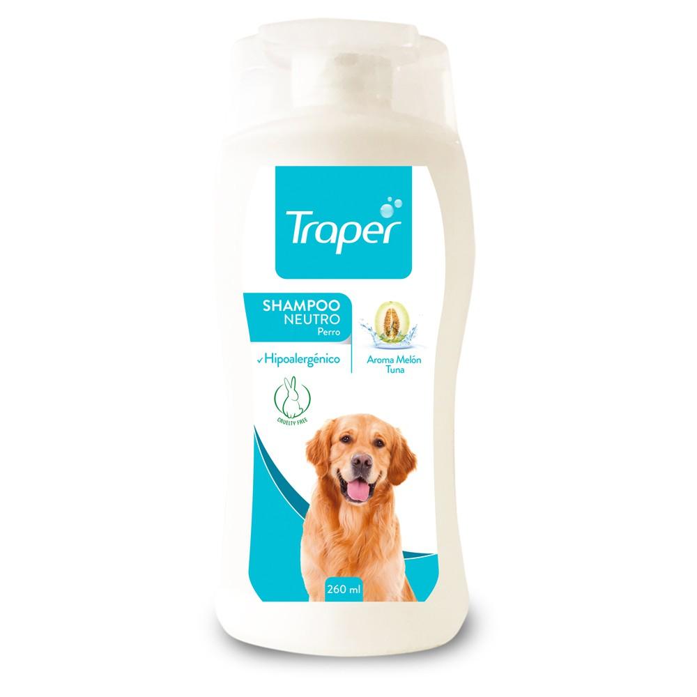 Shampoo neutro adulto