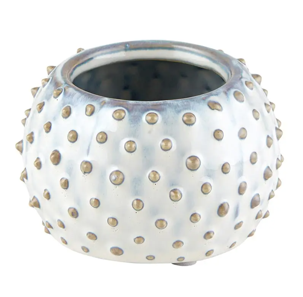 Dotted planter 1 ct
