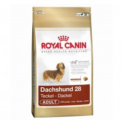 Alimento para perro Dachshund adulto Bolsa 2,5 kg