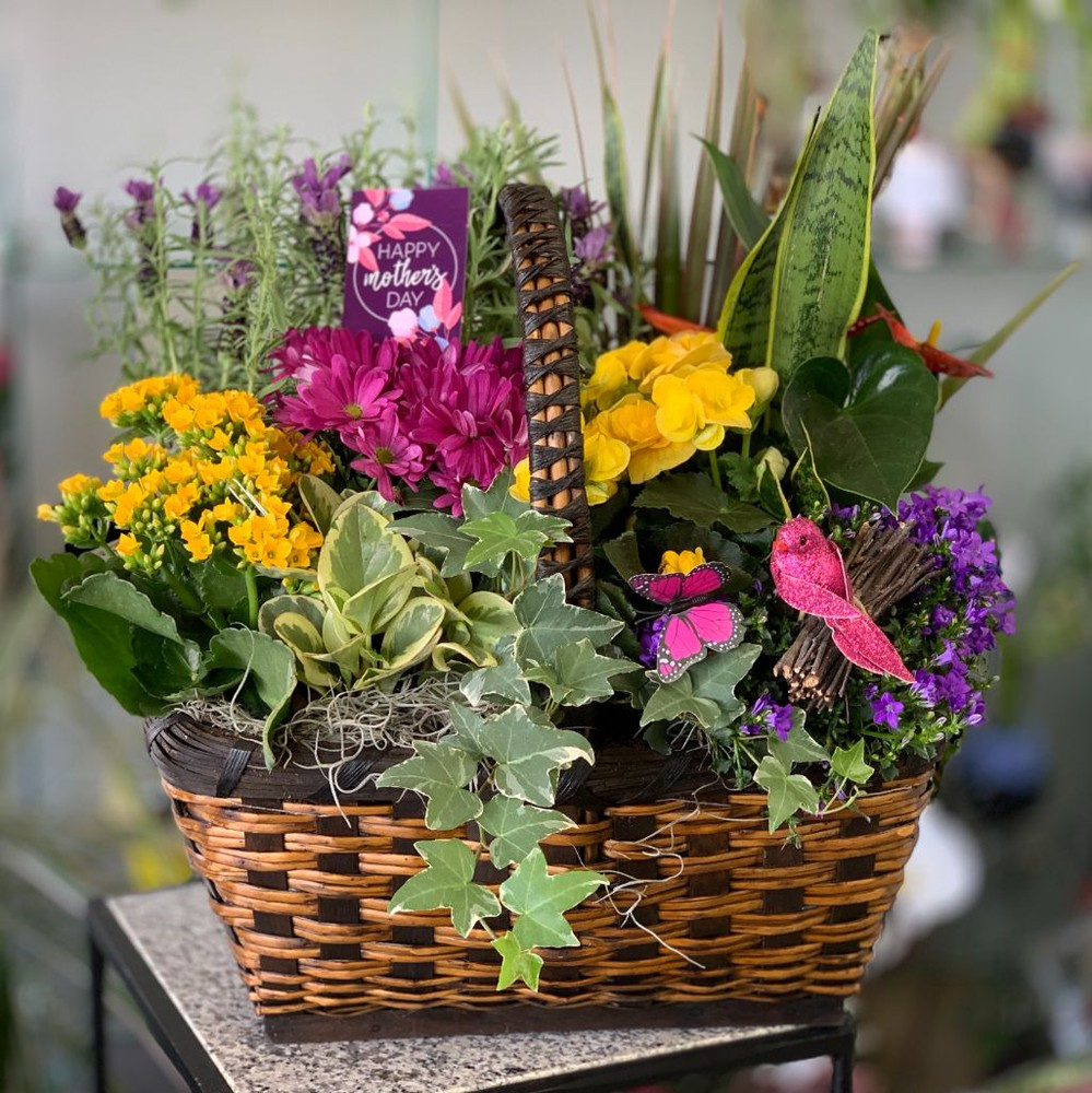 Colourful Mother's Day Planter Basket 1 unit