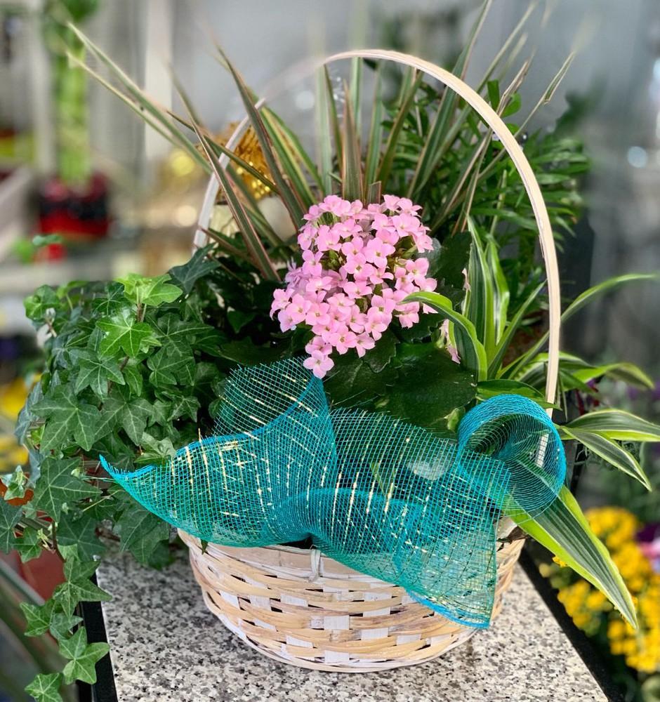 Blooming Garden Basket 1 Basket