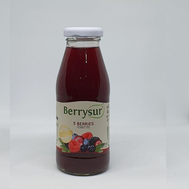 Jugo berry sur - 5 berries 300 gramos