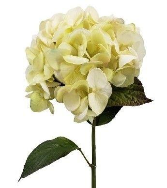 Hortensia blanca Vara de hortensia artificial de 73 cms