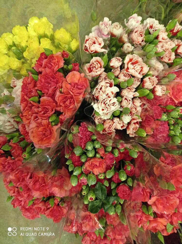 Bouquet de clavel mini Ramo