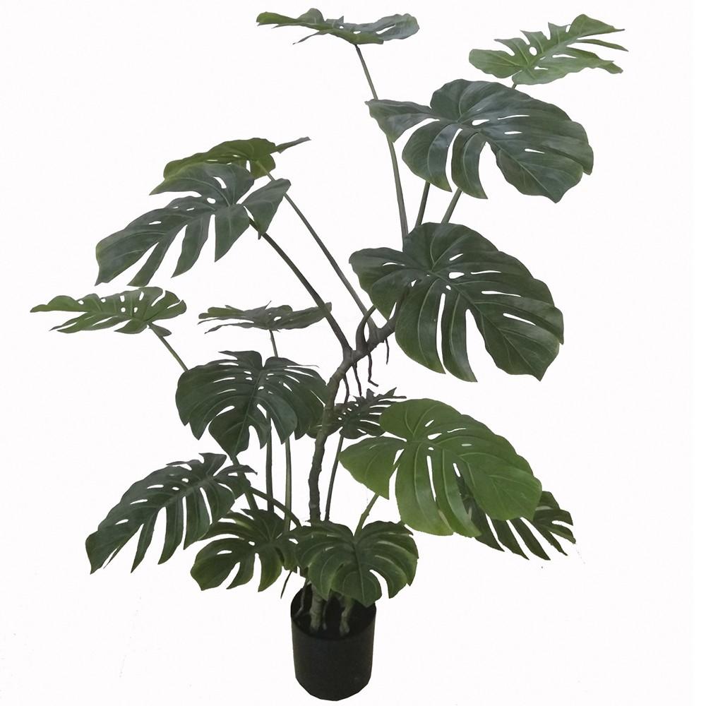 Planta monstera 1,55m verde