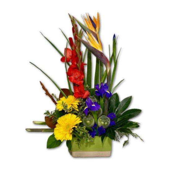Bold & Beautiful Colourful Flower Arrangement