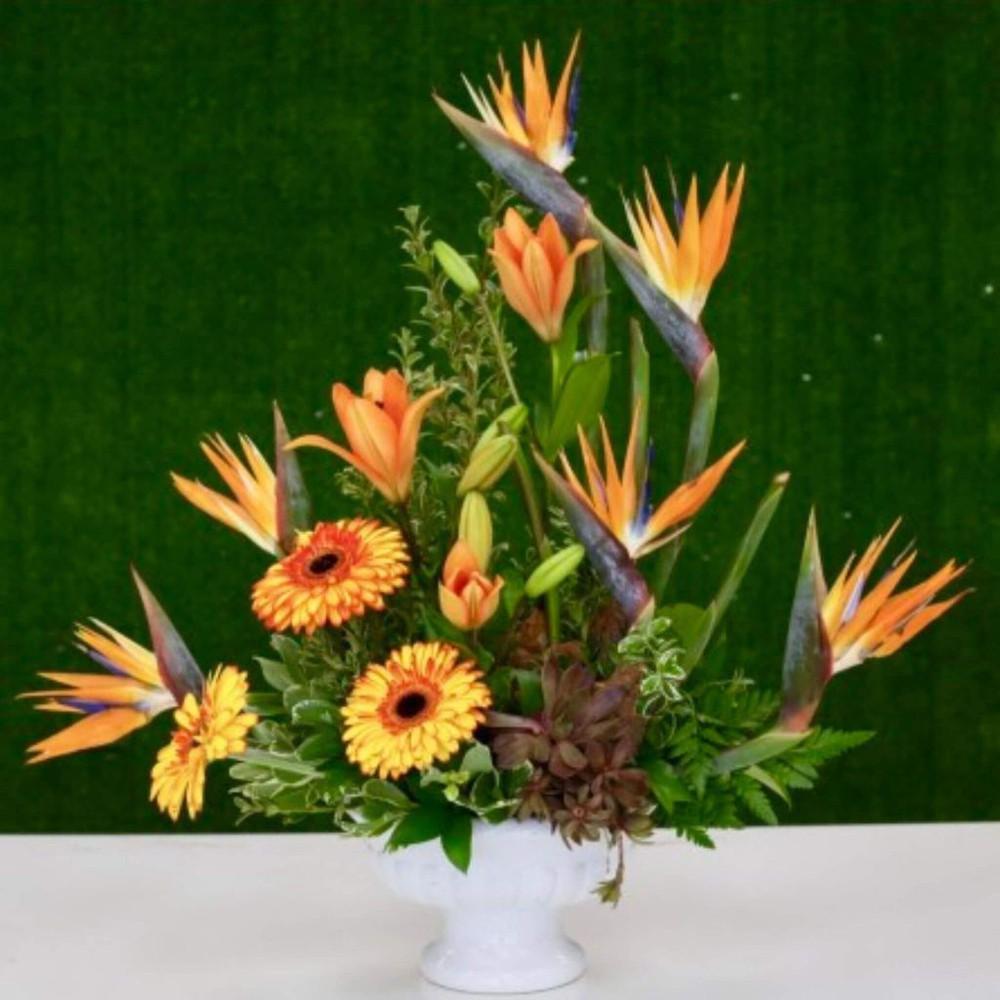 Tropical Bird of Paradise Floral Arrangement