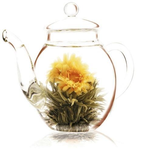 Regalo de té floreciente 500ml