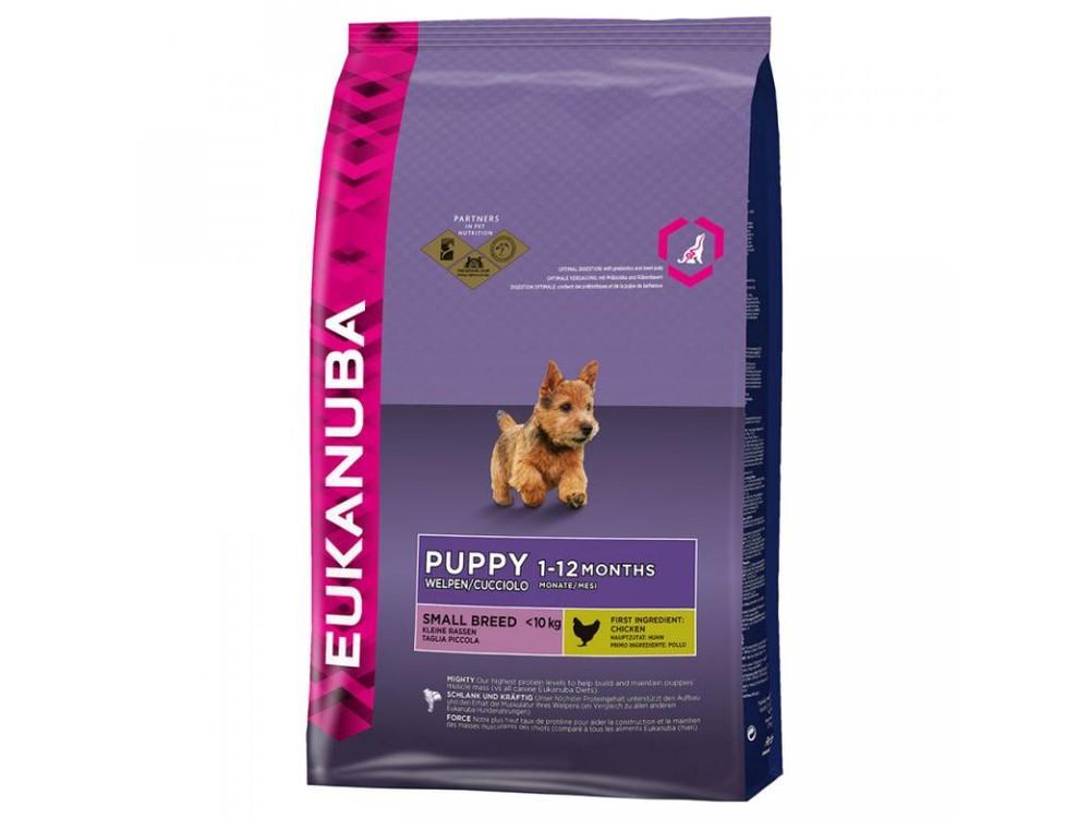 Puppy small (raza pequeña) 6,8 kilos