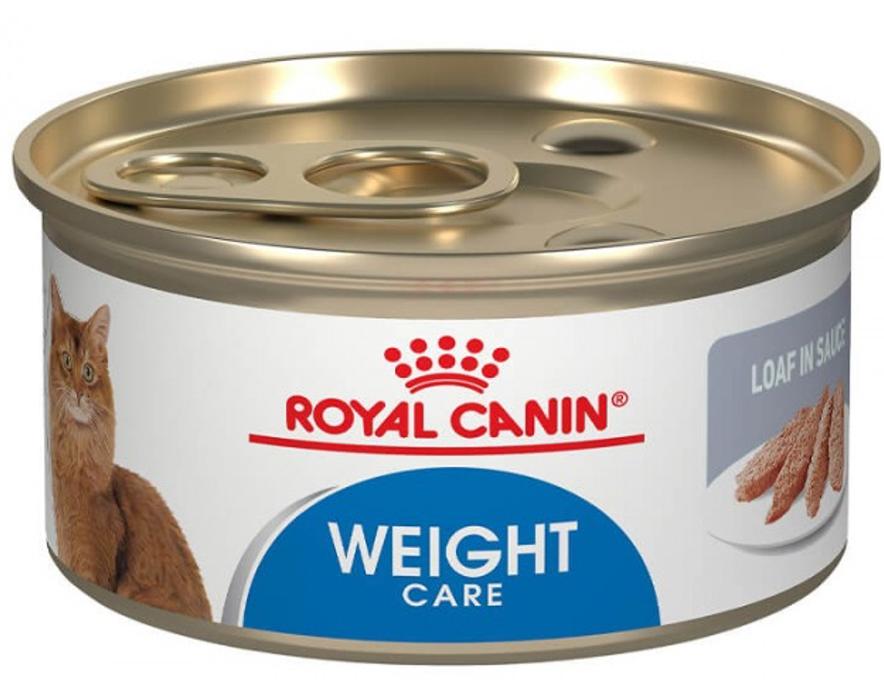 Lata gatos weight care