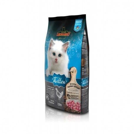 Kitten Bolsa 2kg