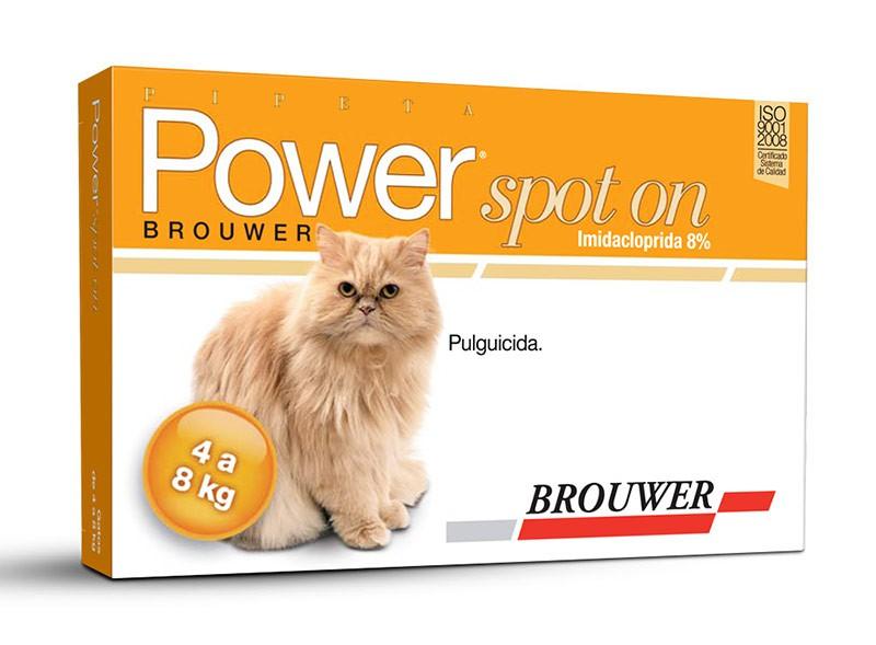 Power gato