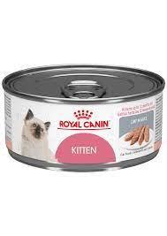 Lata kitten pack de 6 latas
