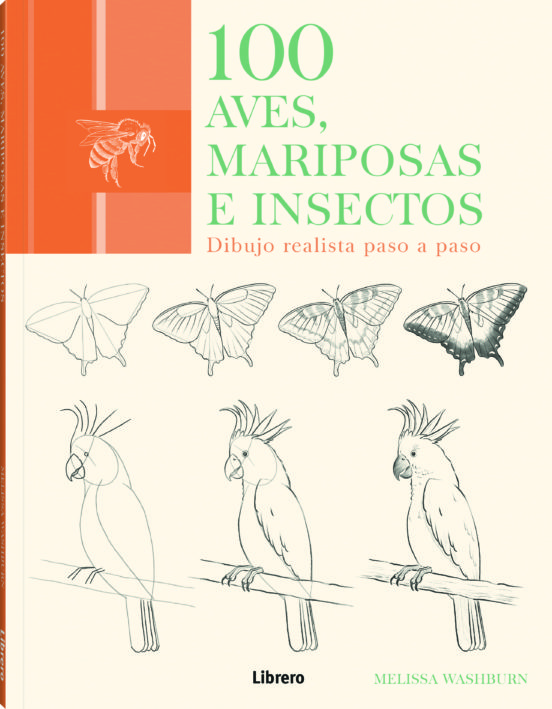 100 aves, mariposas e insectos (dibujo realista paso a paso)