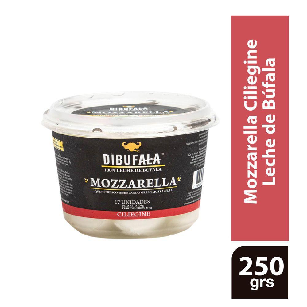 Queso mozzarella Ciliegine 250 g