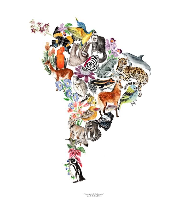 Mapa animales de sudamérica