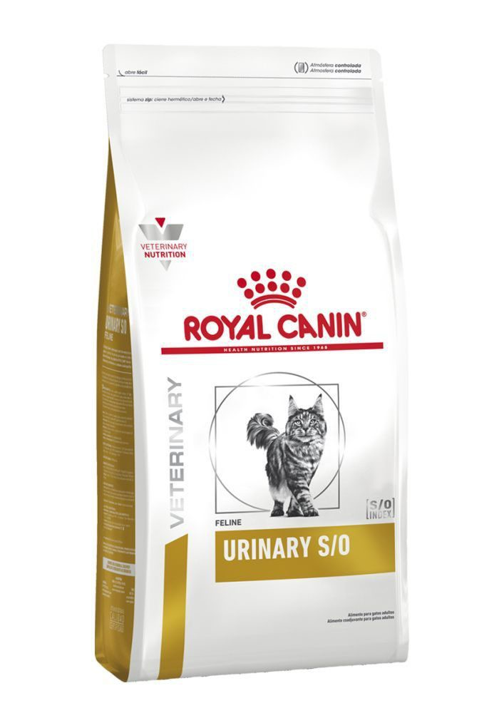 Urinary s/o felino