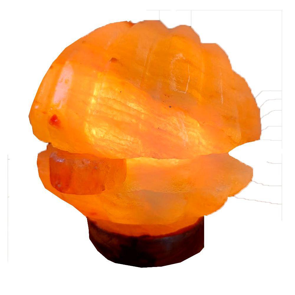 Lámpara de sal ostras
