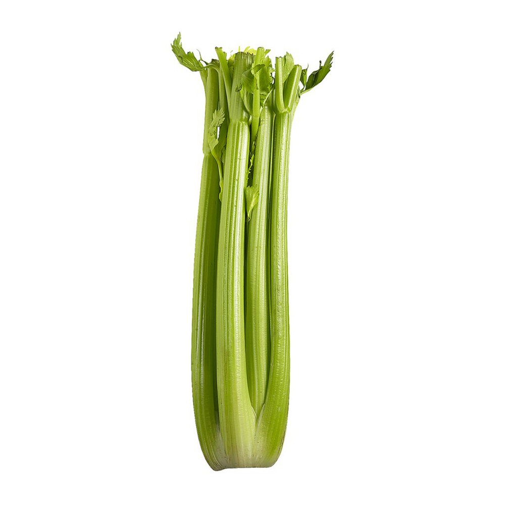 product_branchCelery