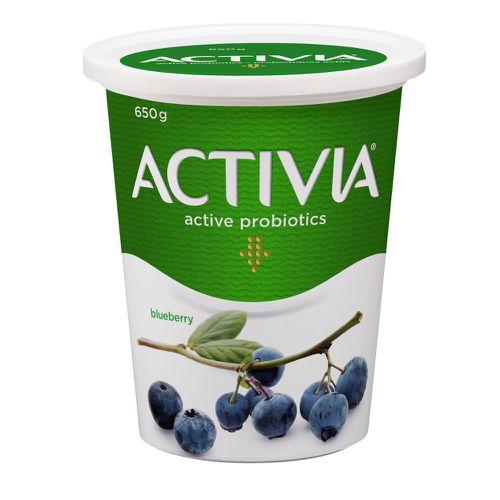Probiotic yogurt blueberry