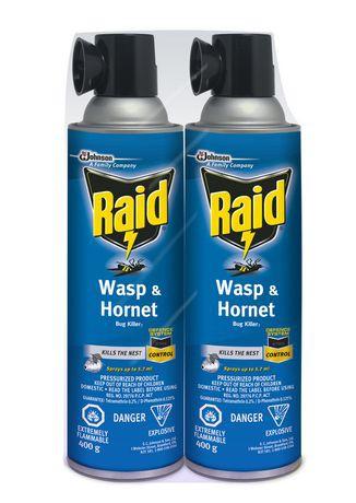 Raid® Wasp & Hornet 2PK